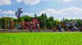 Playground in park. Footage