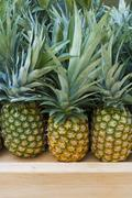 USA, New York, New York City, Brooklyn, Pineapples on market Stock Photos