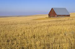 USA, Oregon, Wosco county, Rural scene with solitary barn - stock photo