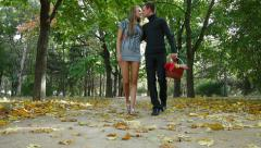 Young Couple Carrying Picnic Basket in Autumn Park Stock Footage