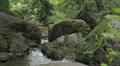 guy walks barefoot in the stream - water - branch - river - creek HD Footage