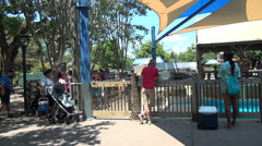 Stock Video Footage of visitors at the zoo