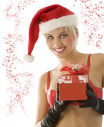 christmas beauty - stock photo