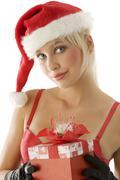 Christmas beauty Stock Photos