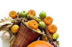 Harvest cornucopia Stock Photos