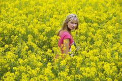 Happy girl in yellow field Stock Photos
