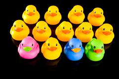 Colorful ducks on black Stock Photos