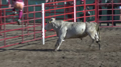 Rodeo, bull knocks clown off fence Stock Footage