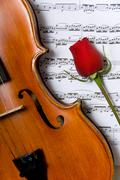 Violin, rose and sheet music Stock Photos