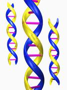 Digitally generated image of double helix - stock illustration