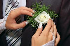 hands fiancee on the buttonhole of groom - stock photo