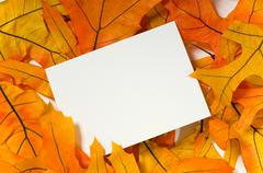 blank card with fall leaves - stock photo