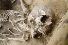 Detail of exhumed ancient skeleton - stock photo