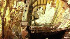 Plane wreck in forest - stock footage
