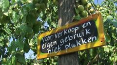 Plum tree in orchard + sign (Dutch)  for sale and own use, do not pick Stock Footage
