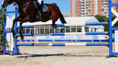 Rider on horse knock down bar during jump Stock Footage