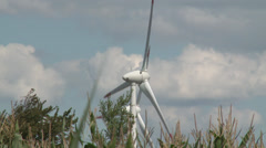 Corn field and wind power - HD Stock Footage