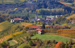 Small village and autumnal vineyards in piedmont, italy. Stock Photos