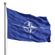flag of nato - stock illustration