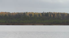 Lake on the background of the autumn forest Stock Footage