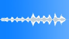 Goose anxious screech - sound effect