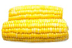 corn-cob isolated - stock photo