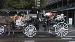 Horse and Carriage Tour, French Quarter, New Orleans Stock Footage