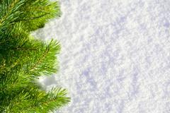 Talvi metsä tausta Kuvituskuvat