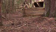 Stock Video Footage of log cabin remains