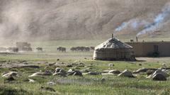 Yurt, yaks, livestock, village, Pamirs, Tajikistan Stock Footage