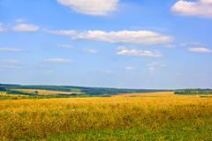 rural late summer landscape - stock photo