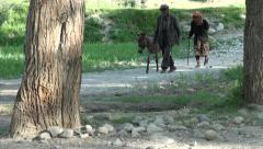 Elderly Tajik couple walk their donkey through a village Stock Footage