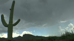 Light Rain Arizona Saguaro Time Lapse Stock Footage