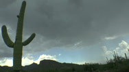 Stock Video Footage of Light Rain Arizona Saguaro Time Lapse