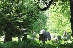Mountaineers cemetary in caucasus mountains. dombay summertime Stock Photos