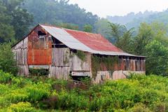 Old Barn on a Foggy Morning Stock Photos