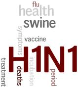 Swine flu h1n1 disease with virus vaccine Stock Photos