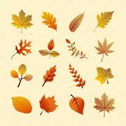 vintage autumn season tree leaves set. eps10 file. - stock illustration