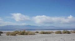 Salton Sea Stock Footage