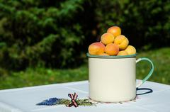 apricots on decorated table - stock photo