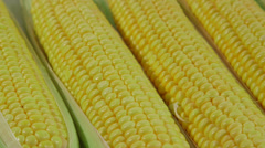 DOLLY: Fresh sweet corn on the cob in grocery store Stock Footage