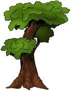 Deciduous Tree Stock Illustration