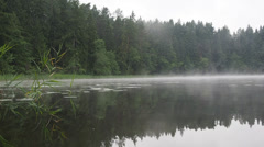 Stock Video Footage of foggy lake