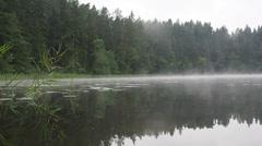 Foggy lake Stock Footage