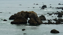 Arch Rock near Bodega Bay Stock Footage
