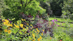 Panning shot of Flower garden - stock footage