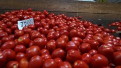 Tomato world Stock Footage