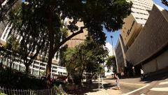 Man picks avocado from tree in the centro of Sao Paulo Stock Footage