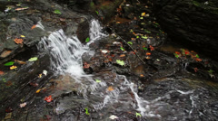 Upper Pipestem Falls - Loop with Audio Stock Footage