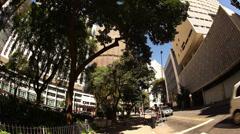Stock Video Footage of Man picks avocado from tree in the centro of Sao Paulo